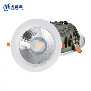 30W COB Down Light