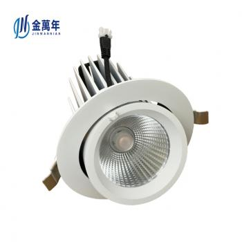 Adjustable Gimbal Downlight